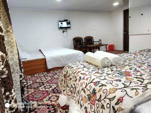 rooms chinar palace (4)